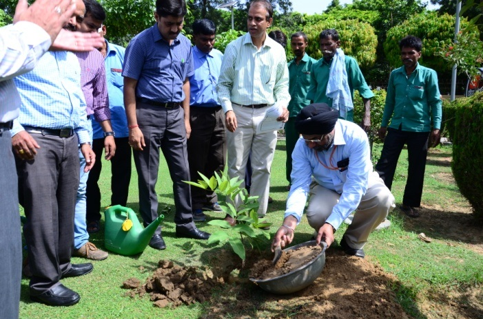IiPM employees for undertaking cleanliness  drive